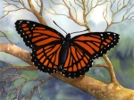 Subject: Viceroy Butterfly
