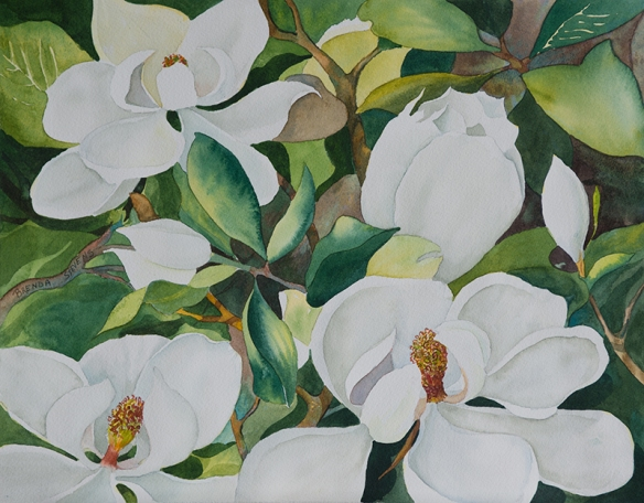 Southern Magnolia 2013